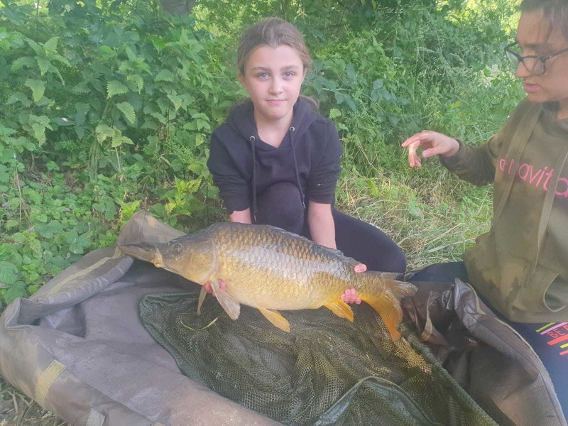 Nice Carp from Pond House by Sophia