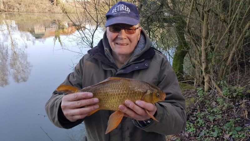 Lovely Crucian Colin