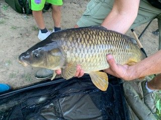 Carp for Ollie at the Padget Family Day at Pond House