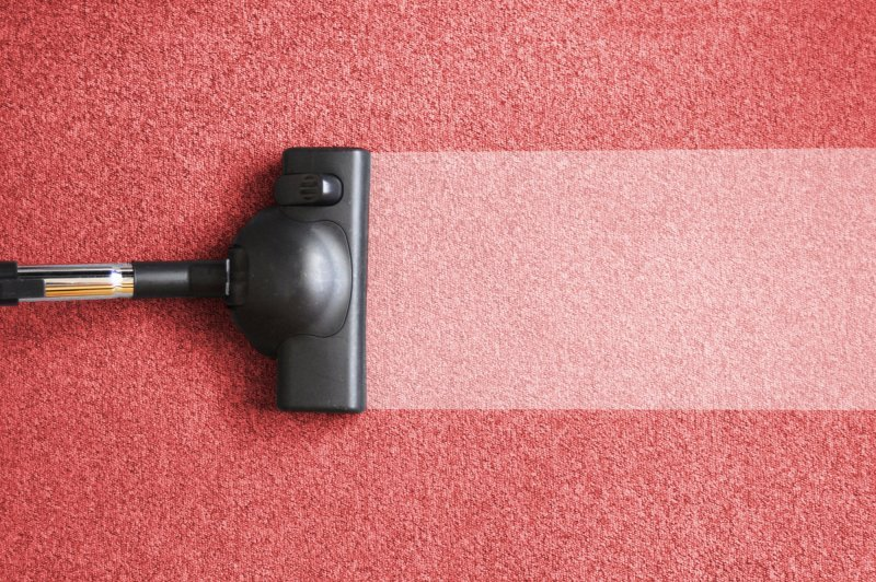 Guidelines on Choosing a Professional Carpet Cleaning Company