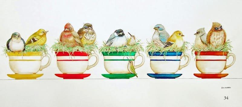 Baby Birds in Teacups