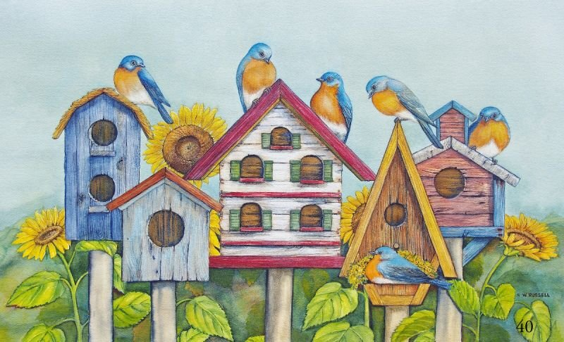 House Hunting Bluebirds