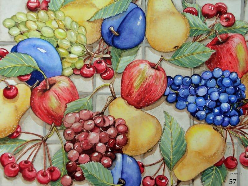 Fruit on Tile Overall Design