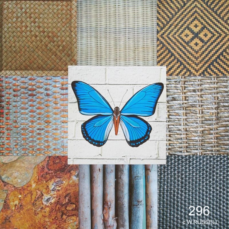 Blue Butterfly I Collage