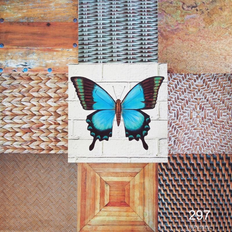 Butterfly II Collage