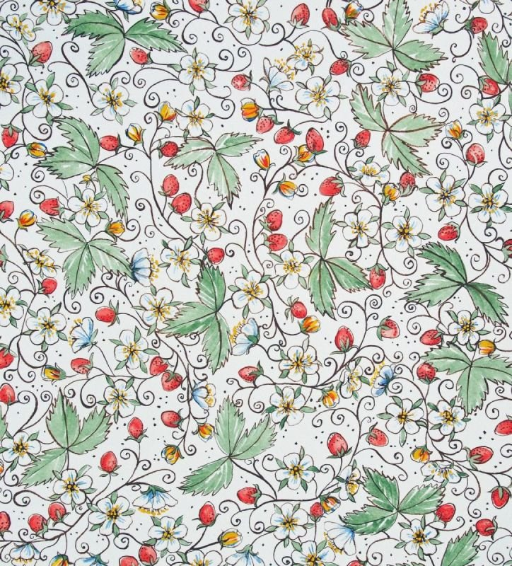 Italian Style Strawberries Overall Design on White
