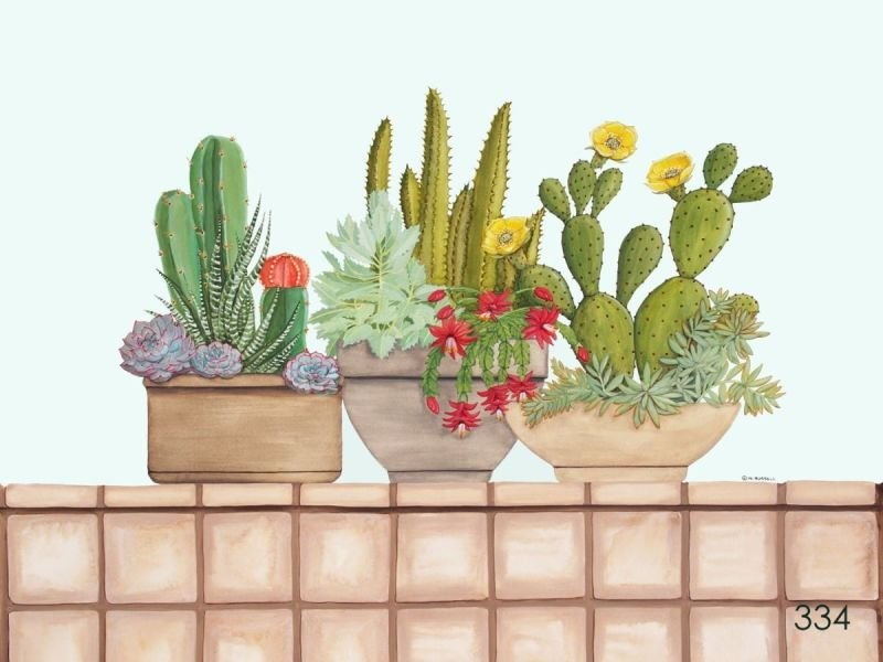 Cacti and Succulents with Background