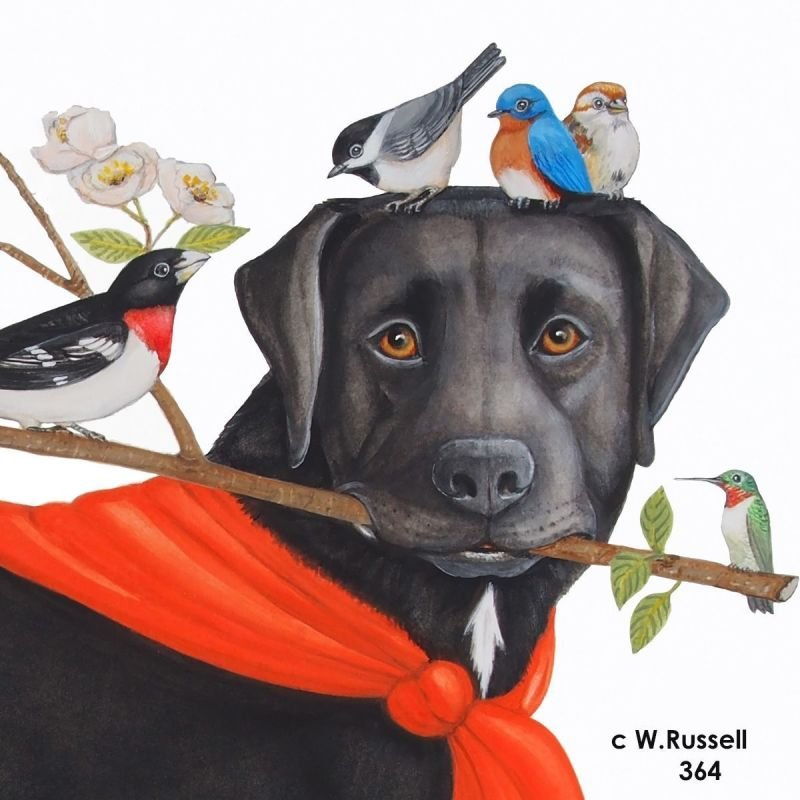 Bird Dog Branches Out Head View with Birds