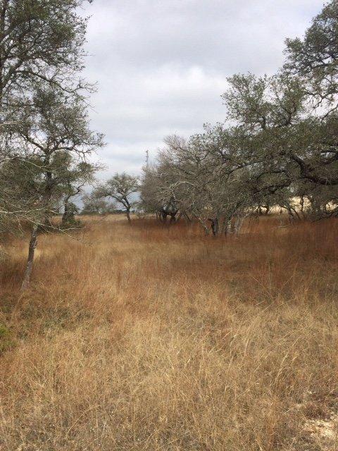 Land in Boerne