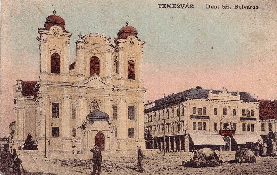catedrala catolica timisoara
