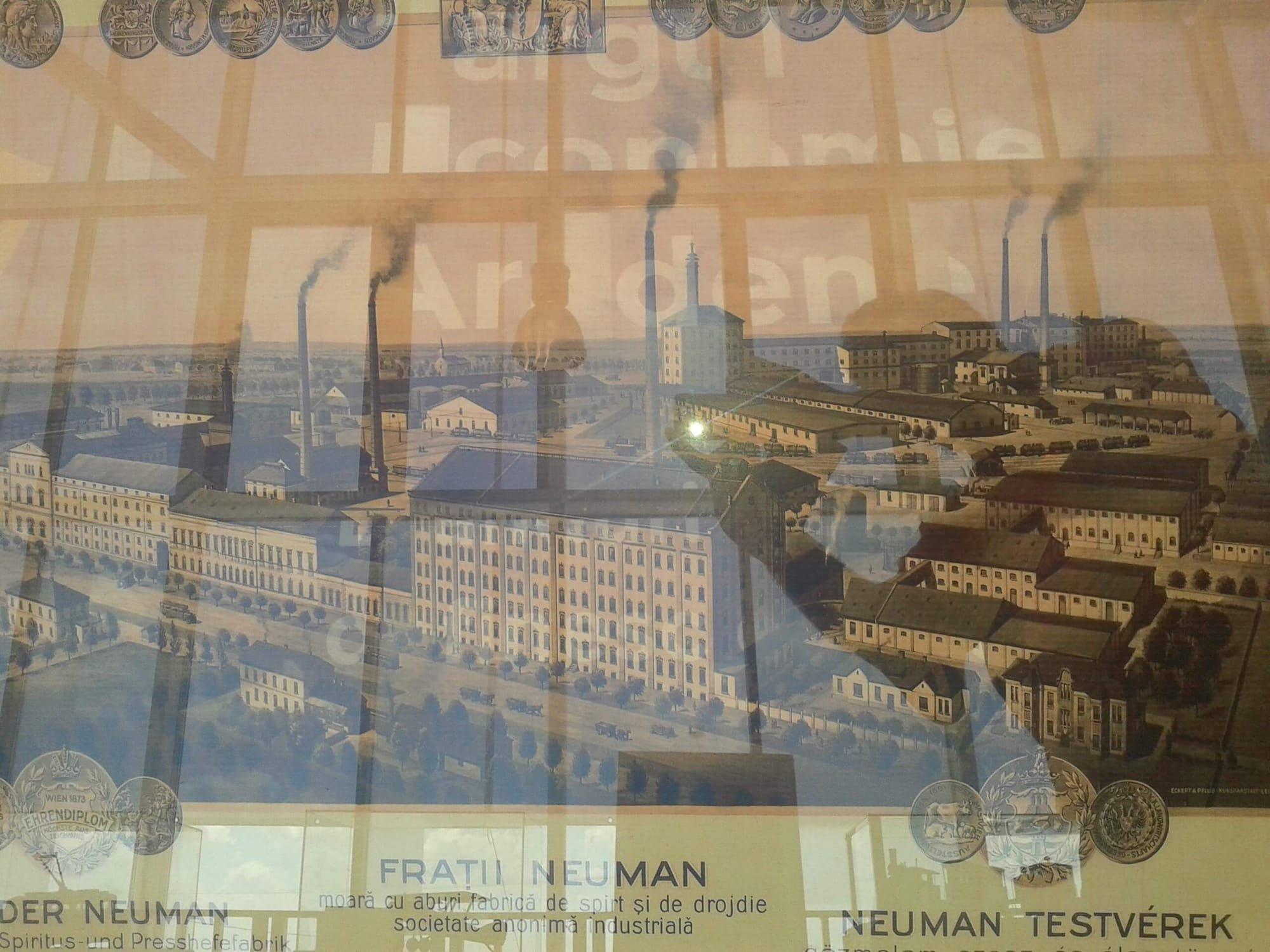Neumann testverek ipartelep Arad