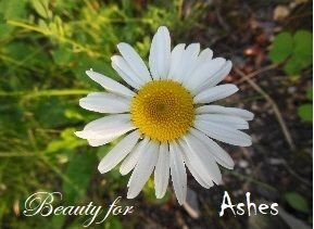 Beauty For Ashes - POST ABORTION Support